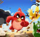 game-angry-bird-ke-trung-phat